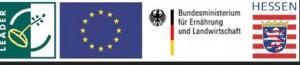 0020-2015-07-21-logos-leader-de-euro-land